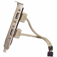 2 usb ports on a bracket with 9 pin header,